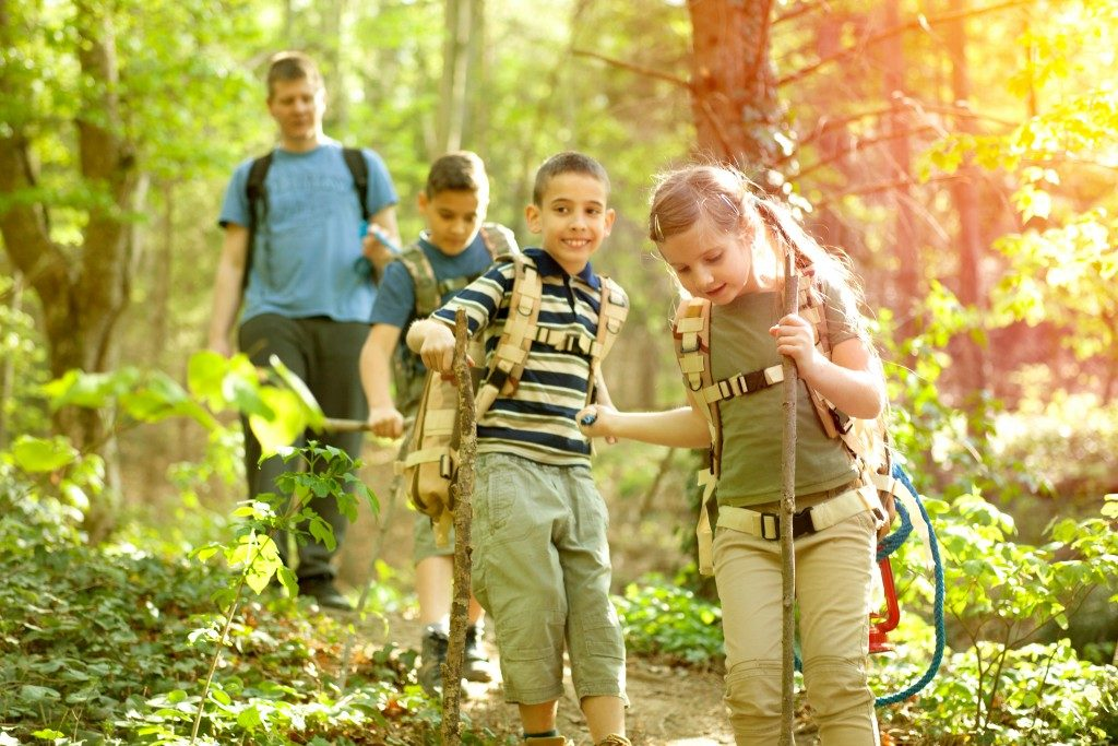 Kids on summer camp having a nature hike